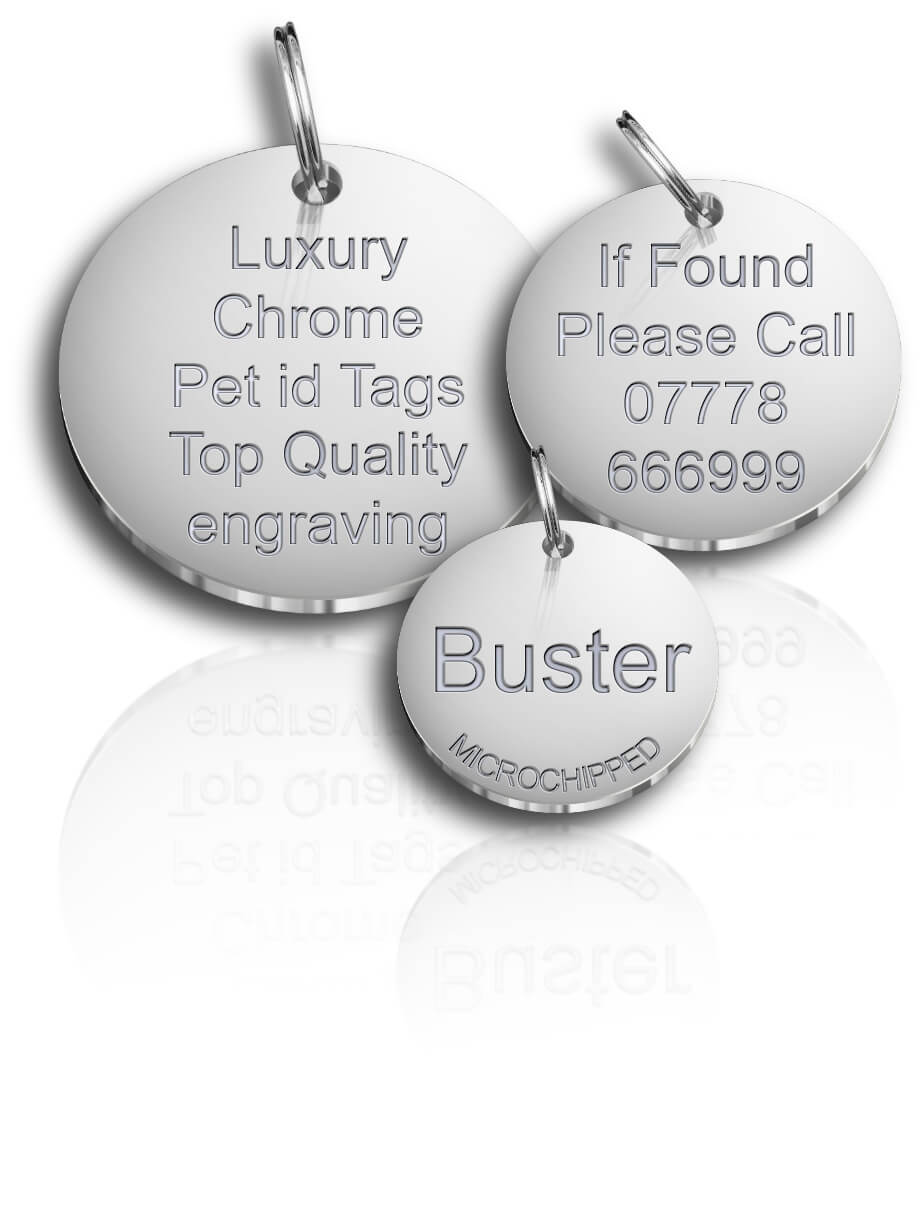 Luxury Chrome Dog Id Tags